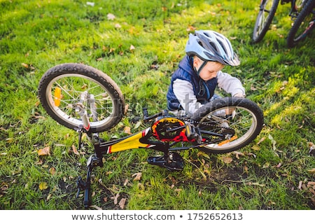 Young man repairing mountain bike in the forest Stock photo © deandrobot