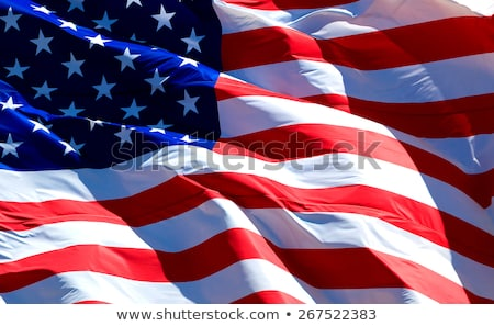 Ondulado bandeira feliz fundo país Foto stock © SArts