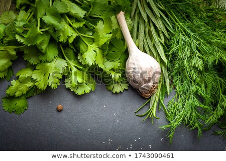Fresh Bunch stock photo © naffarts