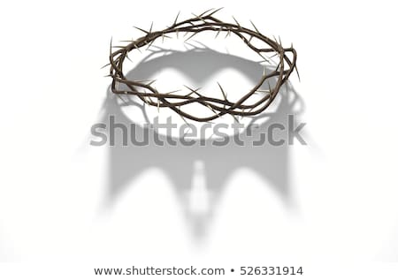 Crown Of Thorns On Dark Stock photo © albund