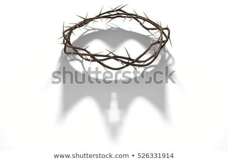 crown of thorns on dark stock photo © albund