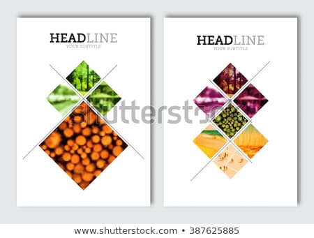 Restoran menü kapak dizayn vektör şablon Stok fotoğraf © blue-pen