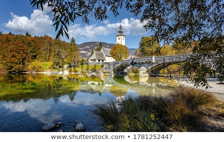Autumn scenery at lake Bohinj Stock photo © stevanovicigor