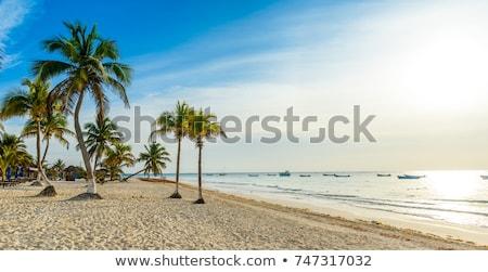 Caraibi · mare · tramonto · Messico · barca · cancun - foto d'archivio © lunamarina