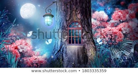 саду гном лесу дерево цвета Adventure Сток-фото © IS2