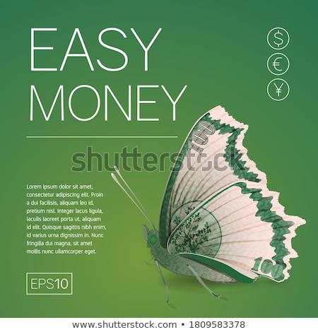 pénz · jövedelem · könnyű · szórólapok · papír · bankjegyek - stock fotó © studioworkstock