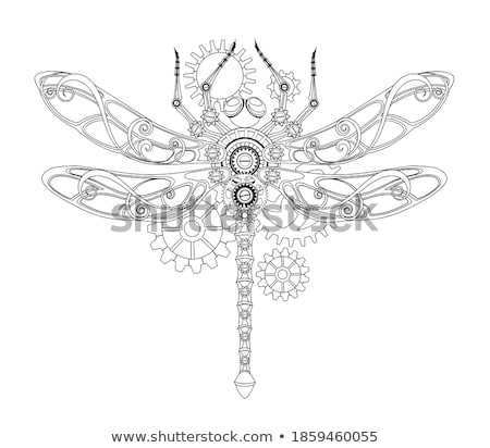 steampunk clock with mechanical dragonfly stock photo © blackmoon979