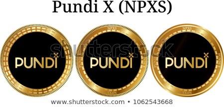 Digitális valuta érme vektor felirat ikon Stock fotó © tashatuvango