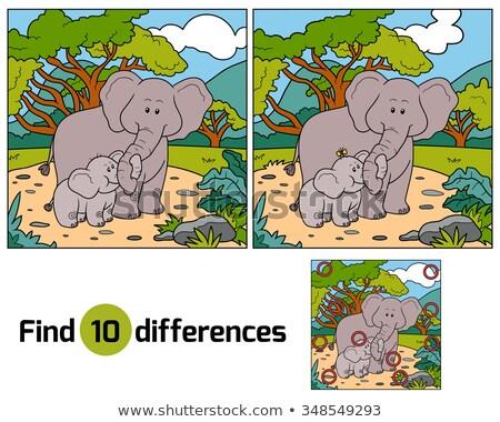 tarea · encontrar · diferencias · elefante · juego · ninos - foto stock © olena