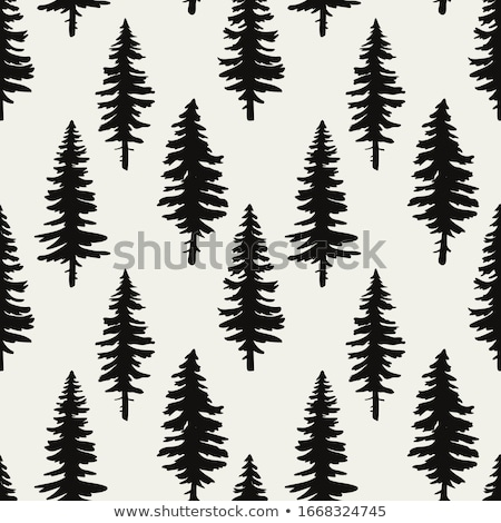 artistic pine tree stock photo © milsiart