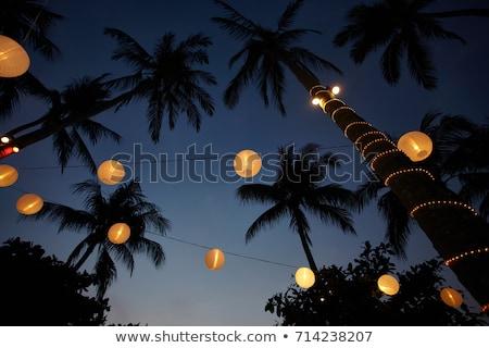 Cidade palmeiras noite ilustração sem costura horizontal Foto stock © tracer