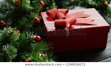 Karácsony ajándék ágak gyöngyök közelkép lövés Stock fotó © dash