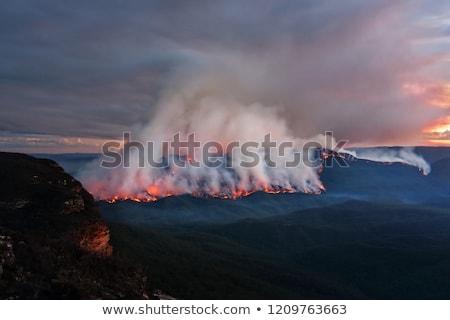 Mount Solitary bush fire burning at dusk Stock photo © lovleah