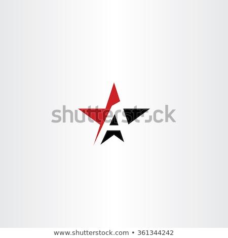 Rood · zwarte · corporate · visitekaartje · sjabloon · vector - stockfoto © blaskorizov