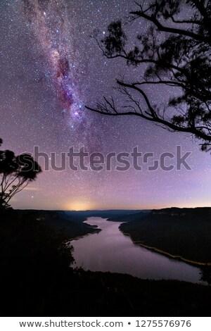 lago · silueta · hermosa · puesta · de · sol · árbol - foto stock © lovleah