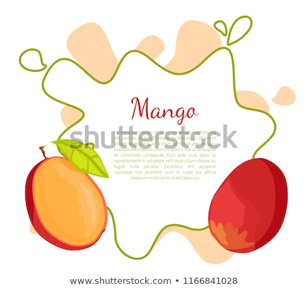 Mango Exotic Juicy Stone Fruit Vector Poster Text Stock photo © robuart
