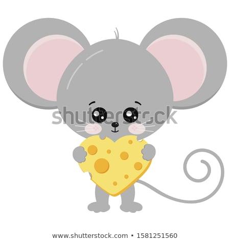 Rato fatia coração queijo ilustração Foto stock © adrenalina