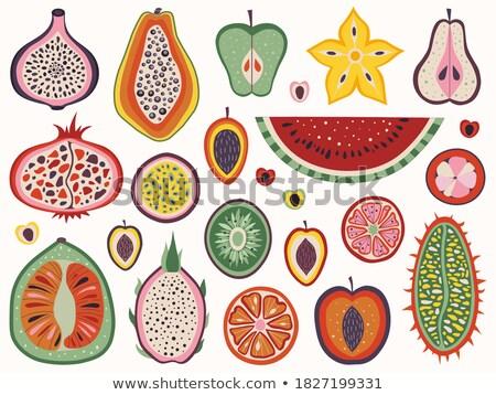 Mangosteen Pomelo Papaya Carambola Fruits Vector Stock photo © robuart