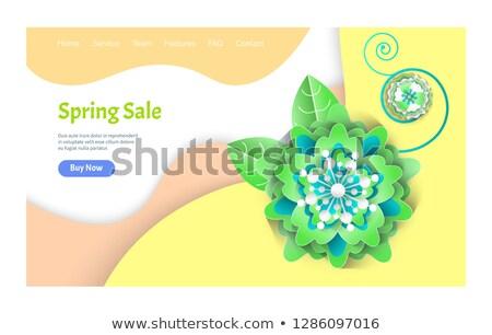 春 販売 ウェブ 装飾された 花ベクトル ストックフォト © robuart