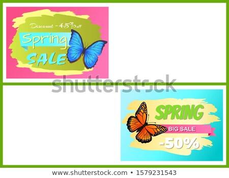 coloré · réduction · étiquettes · vente · différent - photo stock © robuart