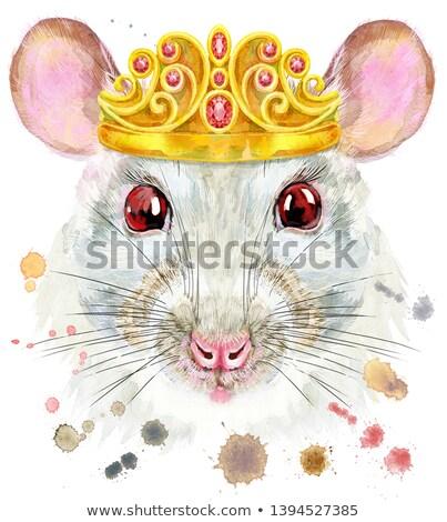 Acuarela retrato blanco rata dorado corona Foto stock © Natalia_1947