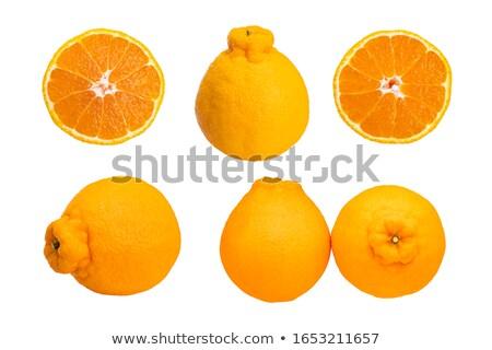japonês · amarelo · mandarim · laranja · conjunto · ilustração - foto stock © Blue_daemon