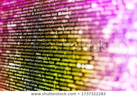 Diseno gráfico aplicación vector supervisar ordenador Foto stock © robuart