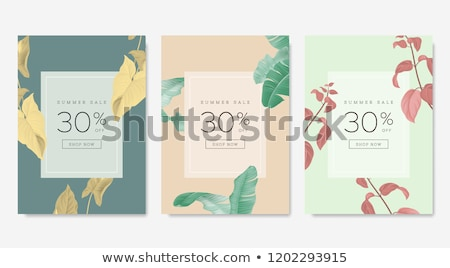 Yaz satış azalma ayarlamak posterler vektör Stok fotoğraf © robuart
