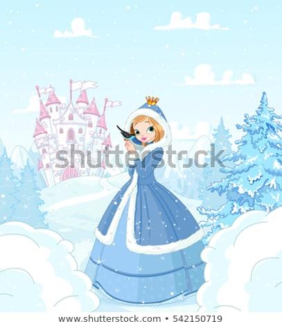 tündérmese · kastély · hercegnő · tél · rajz · rózsaszín - stock fotó © liolle