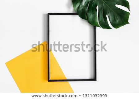 Pálmalevél citromsárga papír vízcsepp copy space minimalista Stock fotó © Illia