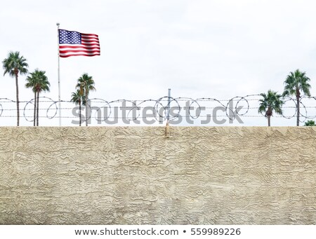 Flags of Mexico and the United States of America with copy space Stock photo © Zerbor