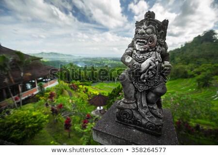 Pietra statua verde lussureggiante valle bali Foto d'archivio © galitskaya