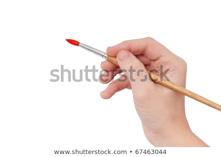 artists hands with paint brush and palette isolated stock photo © rtimages