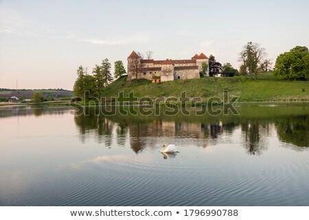 Summer evening Svirzh Castle view(Ukraine). Stock photo © wildman