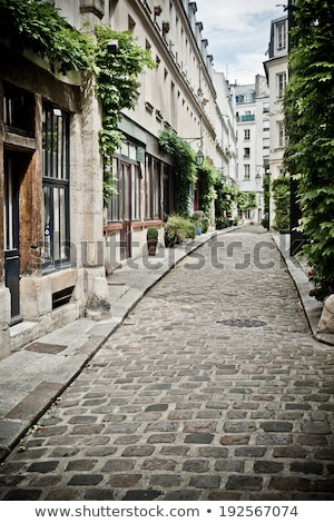 Old cobbled street in Montmartre in Paris Stock photo © backyardproductions