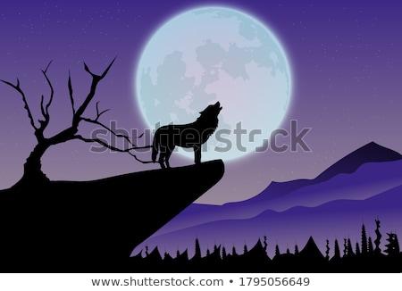 Hemel volle maan wolken licht maan achtergrond Stockfoto © Onyshchenko