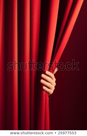 красный · занавес · стороны · белый · искусства · ткань - Сток-фото © alexandre17