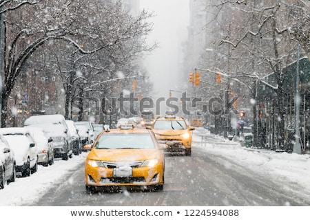 ストックフォト: 公園 · 木 · 木材 · 風景 · 雪 · 美