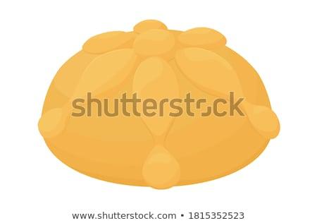 Hagyományos szertartás kenyér izolált pita fehér Stock fotó © elly_l
