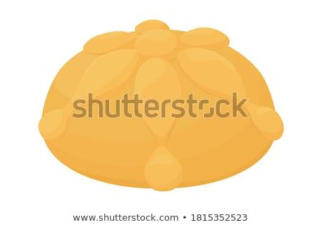 Tradicional ritual pão isolado pita branco Foto stock © elly_l