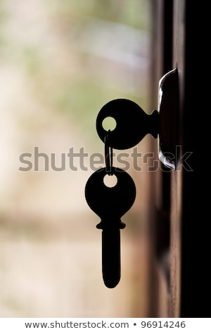 Silhouette of door keys hanging on the open door Stock photo © mnsanthoshkumar