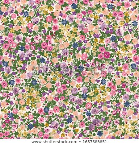 Abstract seamless flower texture Stock photo © Lemuana