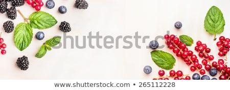Taze lezzetli meyve toplama tablo yaz Stok fotoğraf © juniart