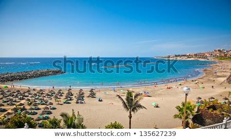 Plaj tenerife güney doğa manzara deniz Stok fotoğraf © lunamarina
