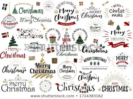 Navidad · vintage · copo · de · nieve · tarjeta · marco · ilustración - foto stock © cherju