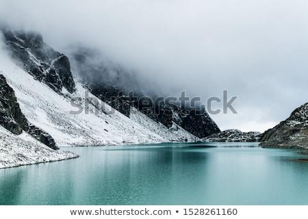 jéghegy · tó · sok · alkatrészek · híres · Izland - stock fotó © wildnerdpix