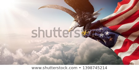 Bald eagle with American flag Stock photo © ozaiachin