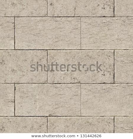 Stone Wall. Seamless Tileable Texture. Stock photo © tashatuvango