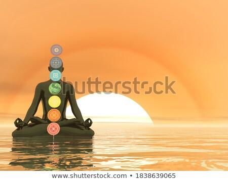 chakra · zeven · mandala · gedetailleerd · henna · stijl - stockfoto © elenarts