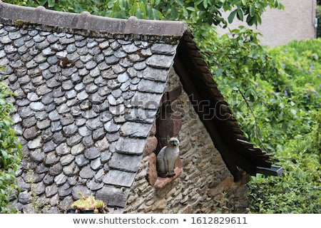 Shale roof Stock photo © elxeneize
